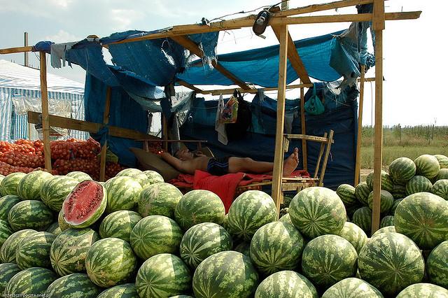 фрукты в крыму в июле 2015