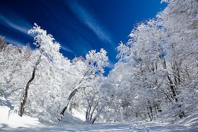 погода в крыму в феврале